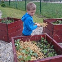Skrb za vrt